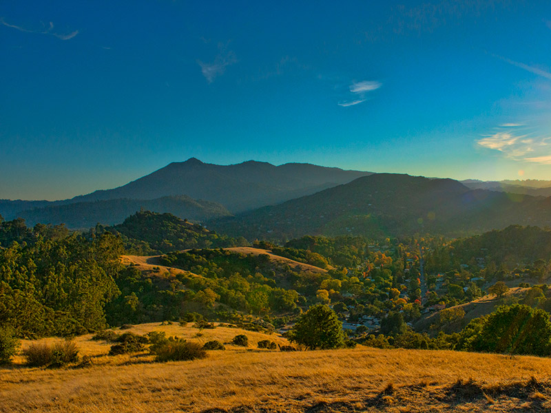 Mount Tamalpais photo courtesy of Flickr user Thanksfor2.5millionviews